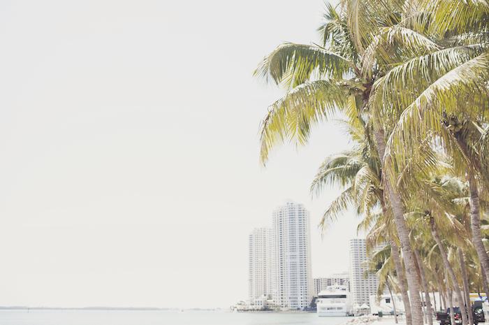 Miami Investir