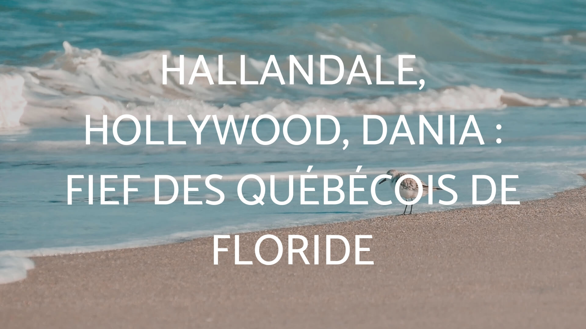 Hallandale, Hollywood, Dania : fief des Québécois de Floride