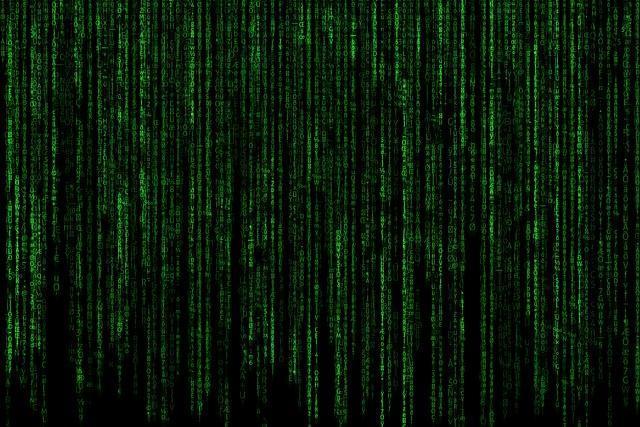 Cyberespace us les r gles respecter sur votre site web for Creer une entreprise de service